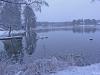 uttran_sweden_104125